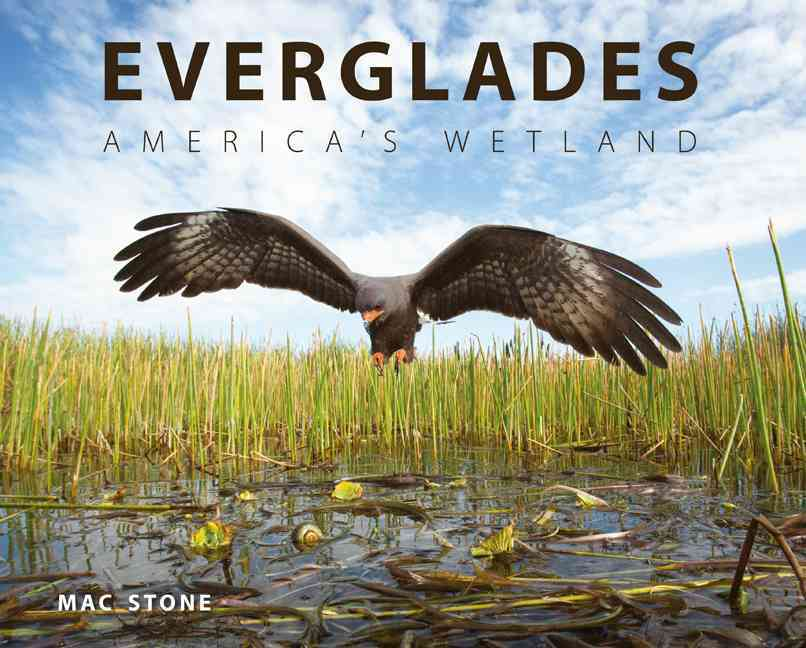 Everglades By Stone, MAC/ Grunwald, Michael (FRW)